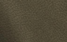 Sequoia 4018
